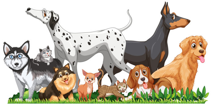 Cute different dogs group isolated illustration